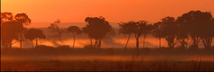 Dawn over Musiara Marsh
